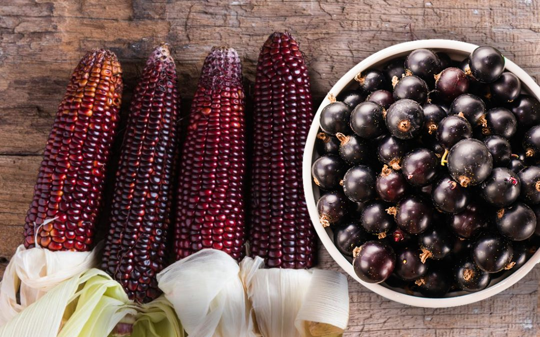 The Perfect Antioxidant to Boost your Immune System: Acai Berry and Purple Corn!